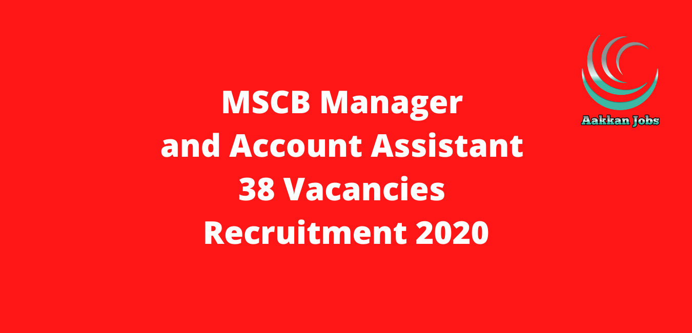 MSCB Manager and Account Assistant 38 Vacancies Recruitment 2020